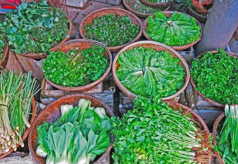 erbe-e-aromi vietnam