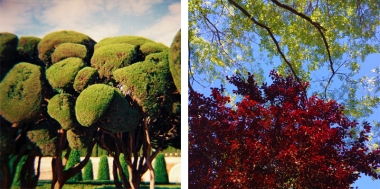 Parco del Retiro madrid2