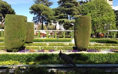 Parco del Retiro madrid7